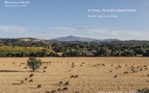 A Creta, Terra di u pasturisimu